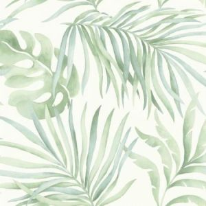 York SO2452 Paradise Palm Wallpaper