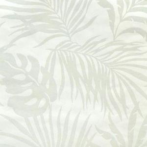 York SO2491 Paradise Palm Wallpaper