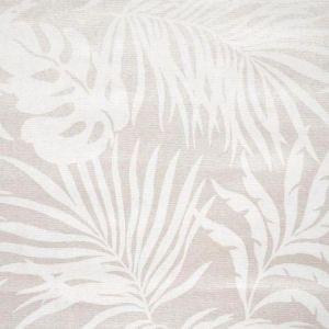 York SO2493 Paradise Palm Wallpaper