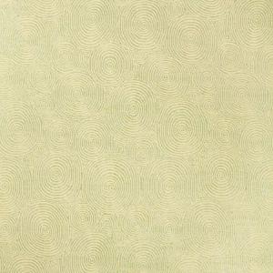Schumacher Hypnotic Mineral 54250 Fabric