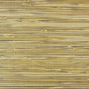 NA534 Astek Wallpaper