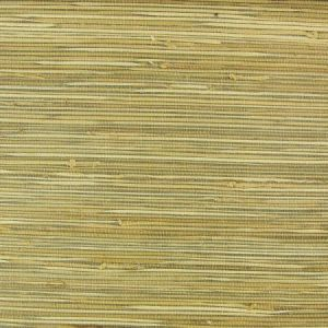 NA539 Astek Wallpaper