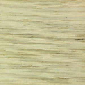 NB170 Astek Wallpaper