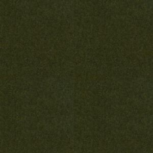 35204-3030 Savoy Suiting Hunter Kravet Fabric