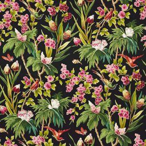 175700 SEYCHELLES Noir Schumacher Fabric