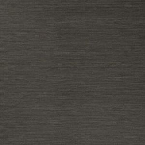 50299W SALIX Graphite 17 Fabricut Wallpaper