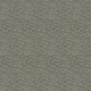 4917 Grey Trend Fabric