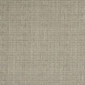 4905 Dove Trend Fabric
