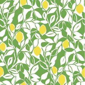 2969-26023 Loretto Citrus Lime Brewster Wallpaper