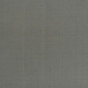 DOUPPIONI SILK Flint Fabricut Fabric