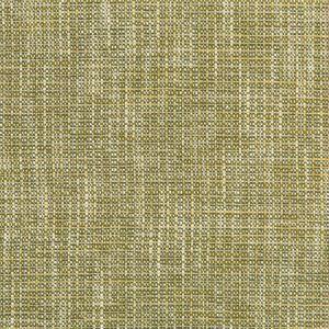 35866-314 RIVER PARK Meadow Kravet Fabric