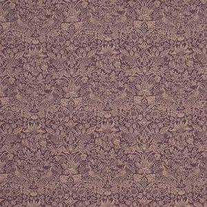 STRAWBERRY MEADOW LL Dragonfly Fabricut Fabric