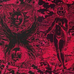 5010423 MODERN TOILE Pink & Black Schumacher Wallpaper