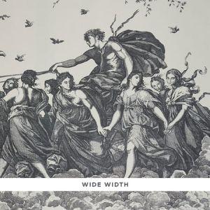 5011500 CHARIOT OF DAWN TOILE Black Schumacher Wallpaper