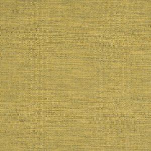 ZUMA Pineapple Fabricut Fabric