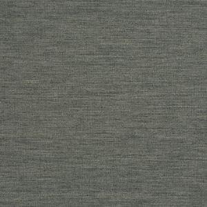 ZUMA Citadel Fabricut Fabric