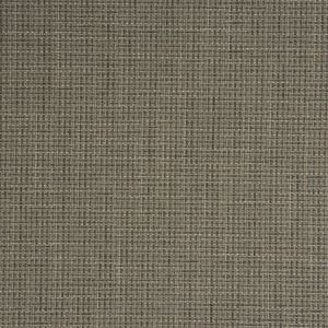 CADIZ Mouse Fabricut Fabric
