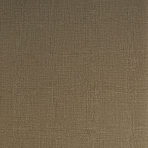 30013W Umber 06 Trend Wallpaper
