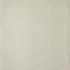 30020W Dove 02 Trend Wallpaper