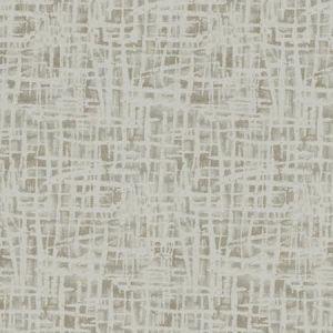 CRACKED EARTH Birch Fabricut Fabric