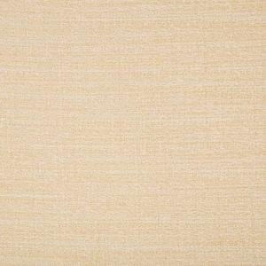 9789-116 Kravet Fabric
