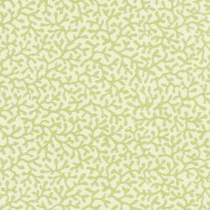 A8041 Tropique Greenhouse Fabric