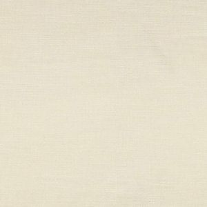 A9 0002 2200 ACTIVATOR DOUBLE FACE FR Ivory Scalamandre Fabric