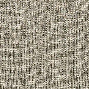 A9 0005 2400 MEDLEY FR WLB Cord Scalamandre Fabric