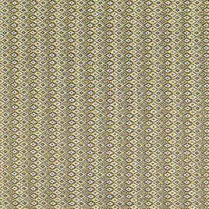 A9 0005 4900 HERDADE Little Miss Sunshine Scalamandre Fabric
