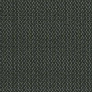 AKILA PRINT Juniper Stroheim Fabric