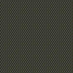 AKILA PRINT Tarragon Stroheim Fabric