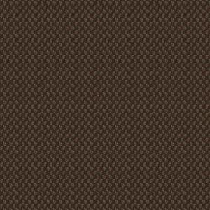 AKILA PRINT Terra Cotta Stroheim Fabric