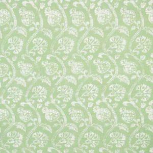 AMBALLA-13 AMBALLA Shamrock Kravet Fabric