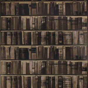 AMW10042-106 LIBRARY Cocoa Kravet Wallpaper