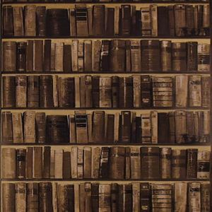 AMW10042-6 LIBRARY Leather Kravet Wallpaper