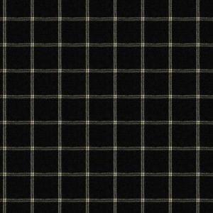 AXEL Tuxedo Fabricut Fabric