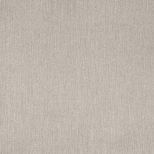 B5526 Chambray Greenhouse Fabric