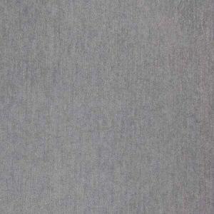 B5536 Cool Gray Greenhouse Fabric