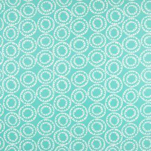 B6924 Turquoise Greenhouse Fabric
