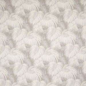 B8860 Eggnog Greenhouse Fabric