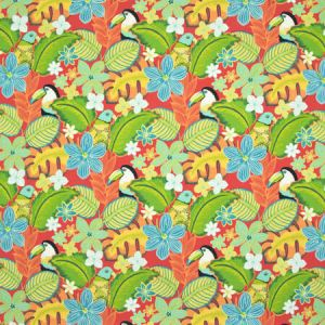 B8899 Fiesta Greenhouse Fabric