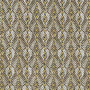 B8 0018 PARO PARANOA Gold Birch Scalamandre Fabric