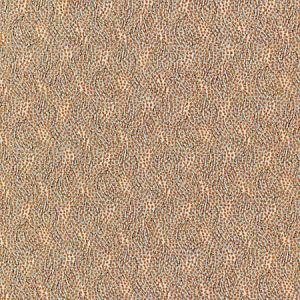 BI 0005 1234 FLURRY Fox Scalamandre Fabric