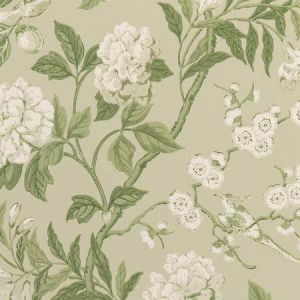 BW45000-10 EMPEROR'S GARDEN Soft Green GP & J Baker Wallpaper