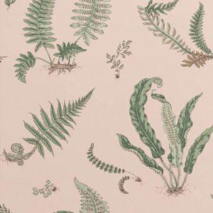 BW45044-11 Ferns Blush GP & J Baker Wallpaper