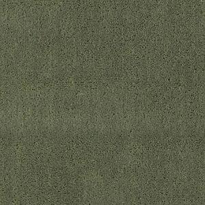 CH 01144300 APOLLODOR Sage Scalamandre Fabric