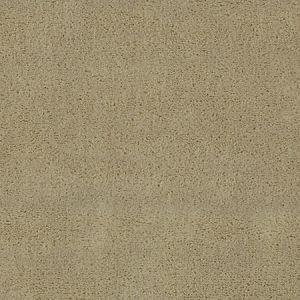CH 01174300 APOLLODOR Sahara Scalamandre Fabric