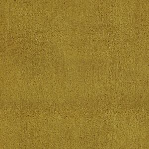 CH 01234300 APOLLODOR Curry Scalamandre Fabric