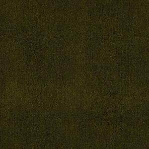 CH 01244300 APOLLODOR Pesto Scalamandre Fabric