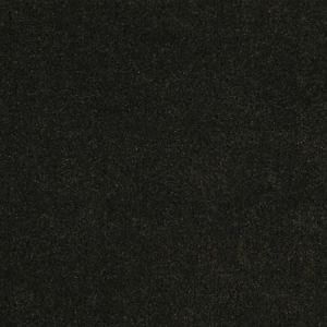 CH 01344300 APOLLODOR Peat Scalamandre Fabric